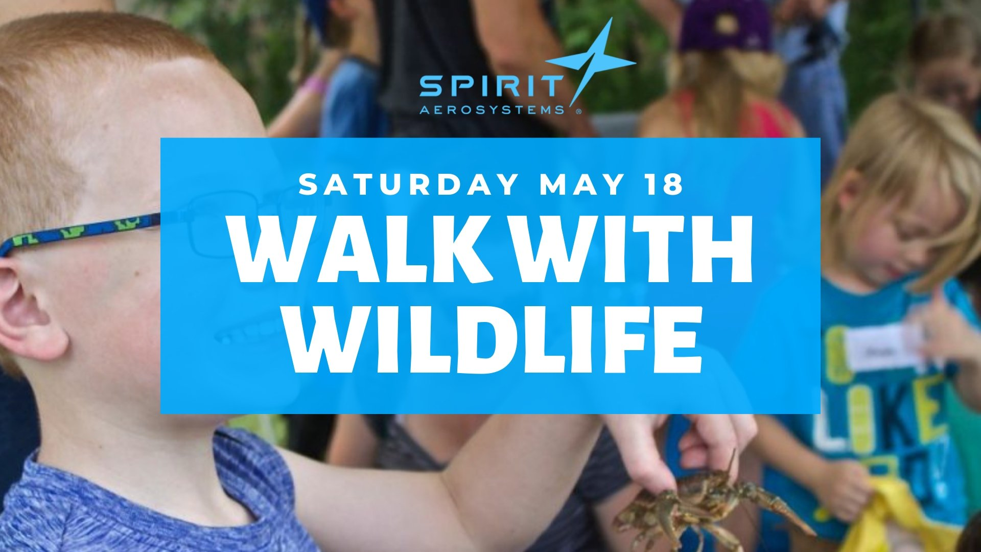 walk with wildlife