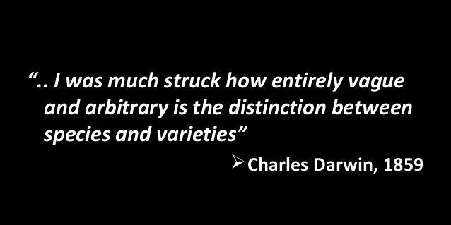 "Charles Darwin Quote: ""I was much struck how entirely vague and arbitrary is the distinction between species and varieties."