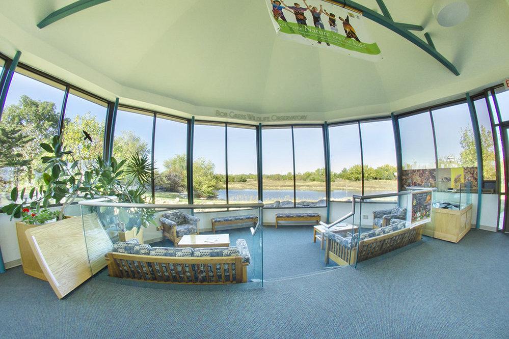 wildlife_observation_room