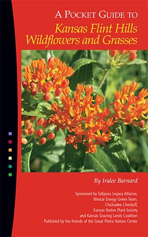 50892 Flint Hills Wildflowers_50892 Flint Hills Wildflowers