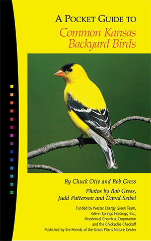 KSBackyardBirds-cover