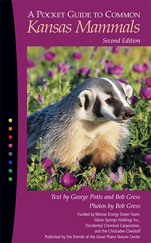 42705 KS Mammals:42705 KS Mammals