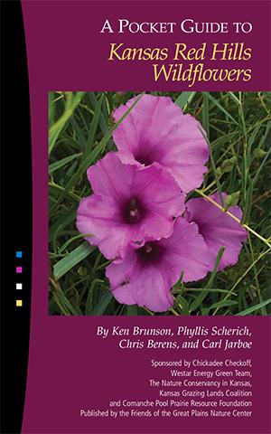48083 KS Red Hills Wildflowers:48083 KS Red Hills Wildflowers