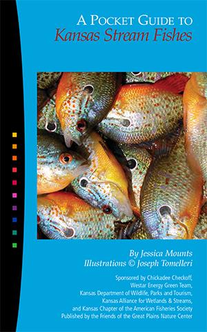 50932 KS Stream Fishes_50932 KS Stream Fishes
