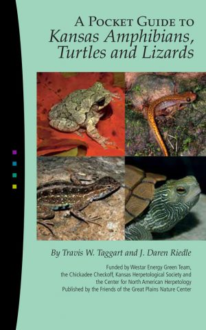 KS-Amphibians,-Lizards-&-Turtles-1