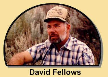 David_Fellows3